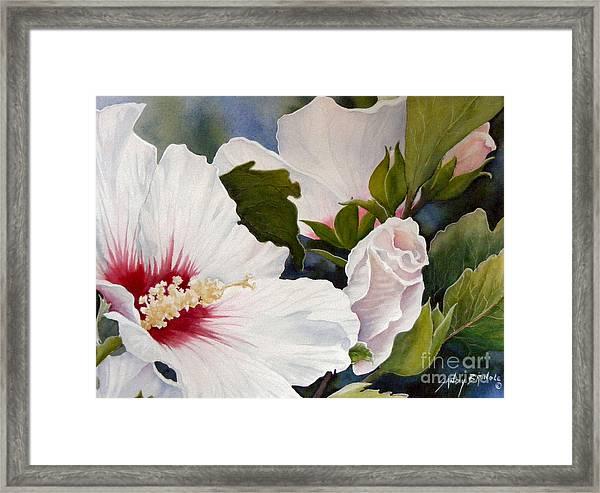 Morning Gift Sold Framed Print