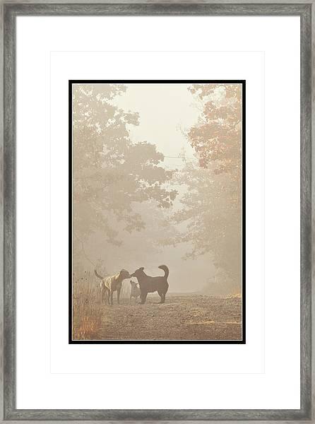 Morning Meeting Framed Print