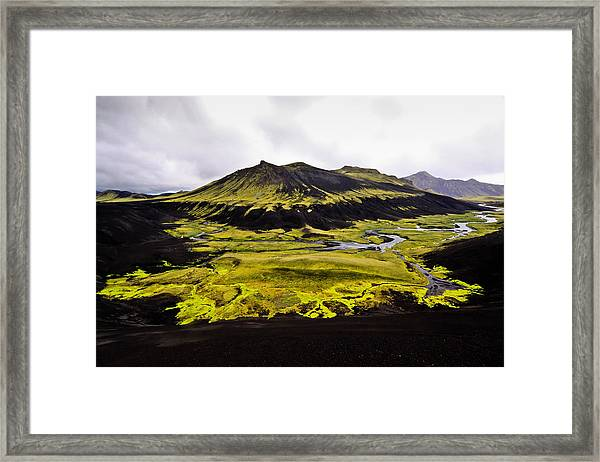 Moss In Iceland Framed Print