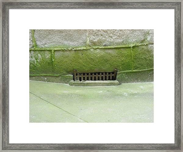 Mossy Grate Framed Print