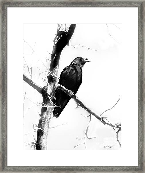 Mother Crow Framed Print