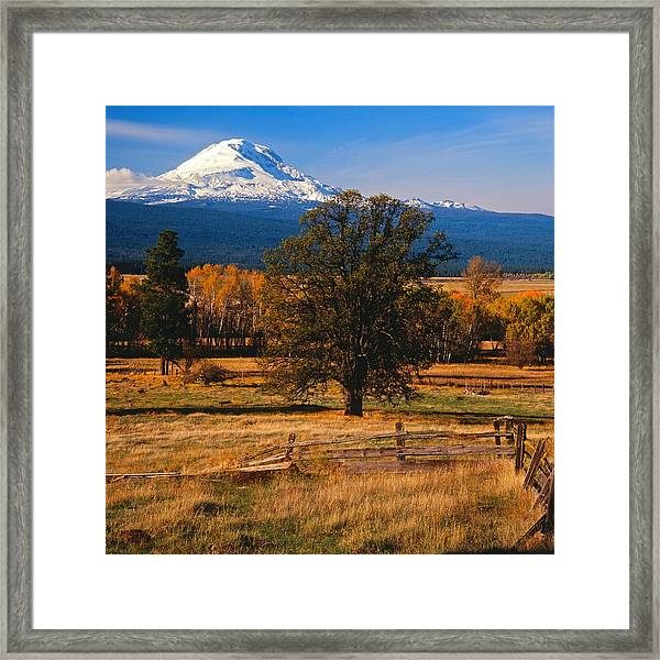 Mt. Adams Autumn Framed Print