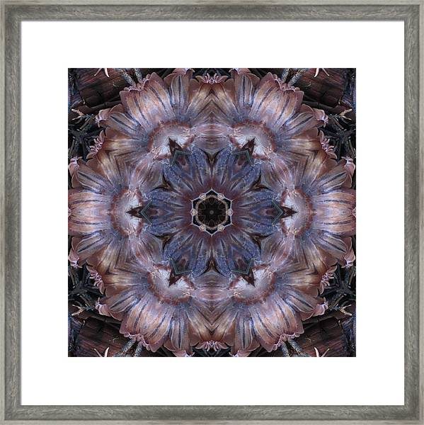 Mushroom With Blue Center Framed Print