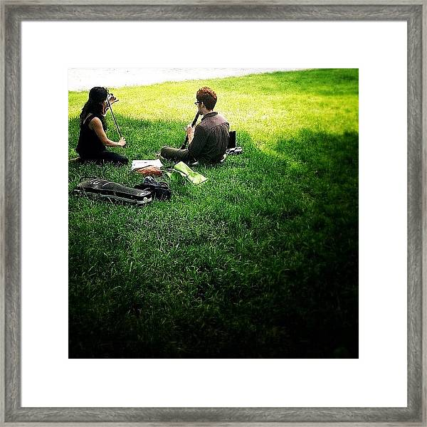 Music On A Grassy Knoll Framed Print
