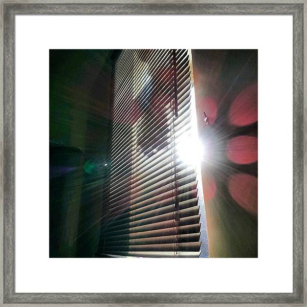 My #window In #morning #sunshine #sun Framed Print