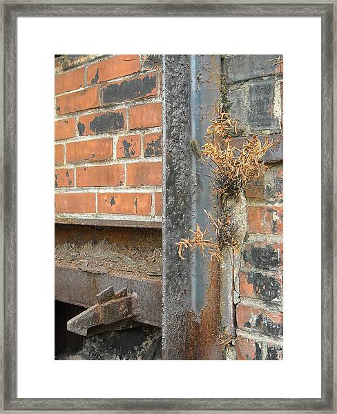 Nature And Industry Framed Print