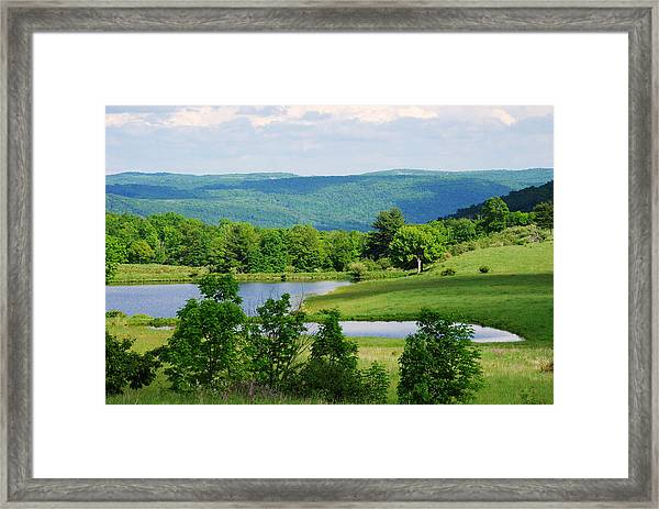 Nature's Beauty Framed Print by April  Robert