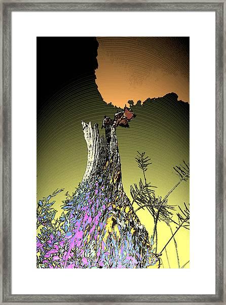Nature's Dress Framed Print