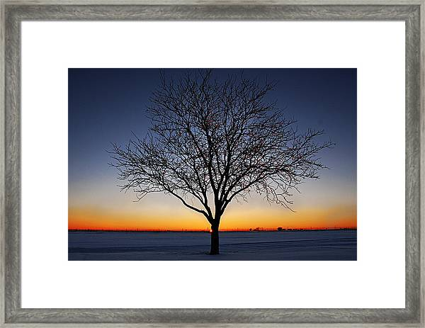 Nature's Light Framed Print
