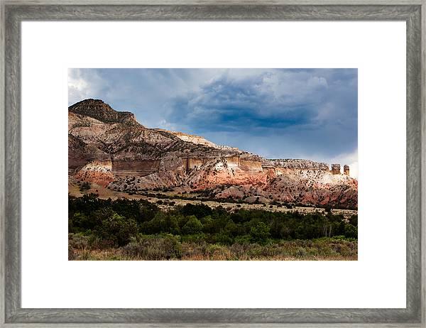 Nature's Paintbrush Framed Print