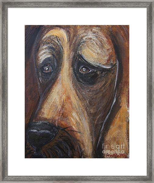 Nothin But A Hunddog Framed Print