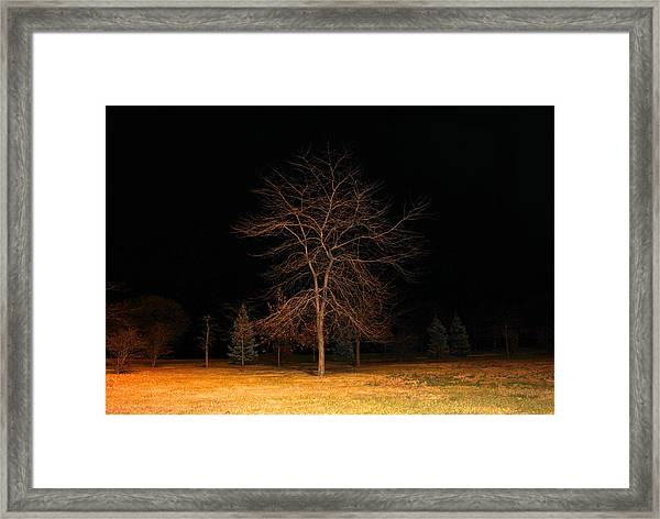 November Night Framed Print
