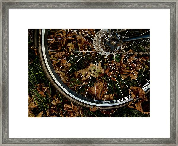Off To Explore Framed Print by Odd Jeppesen