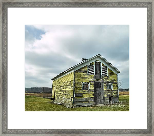 Old Yeller Framed Print