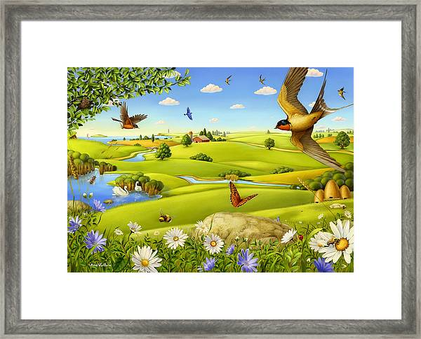 On A Pair Of Wings Framed Print