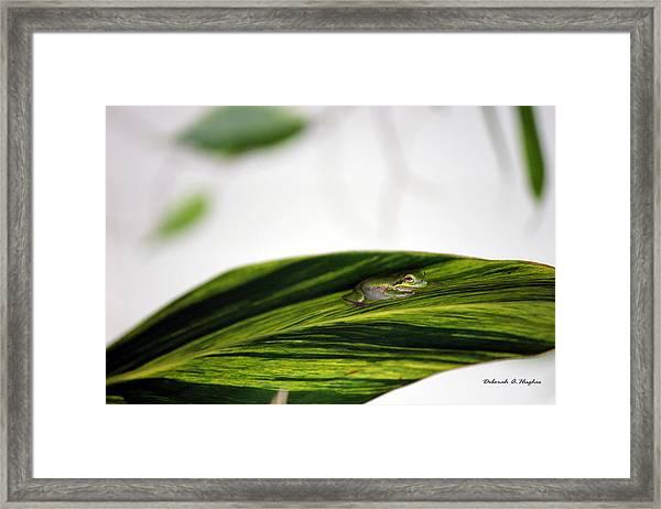 On The Outside Framed Print