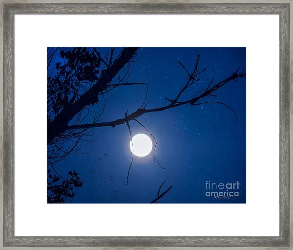 Once In A Blue Moon Framed Print