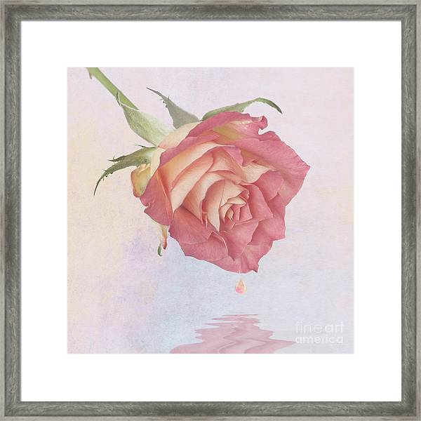 One Drop Of Love Framed Print