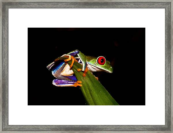 One Two Three Jump Framed Print