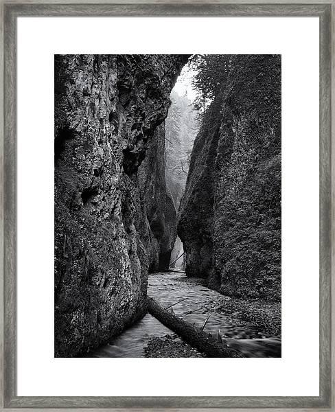 Oneonta Gorge Framed Print