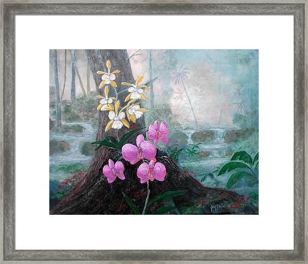 Orchid Wilderness Framed Print