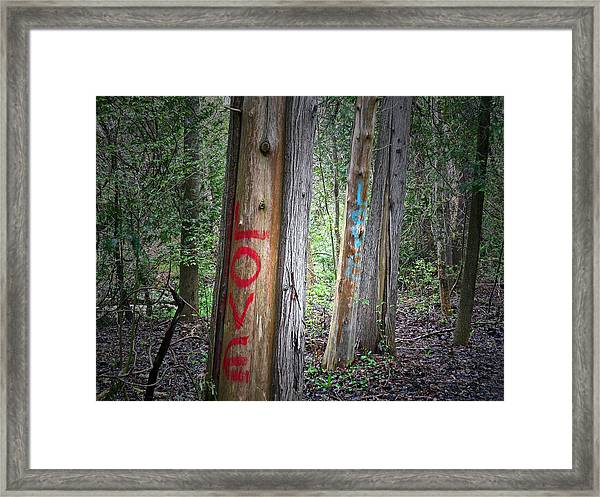 Orono Grafitti 2 Framed Print
