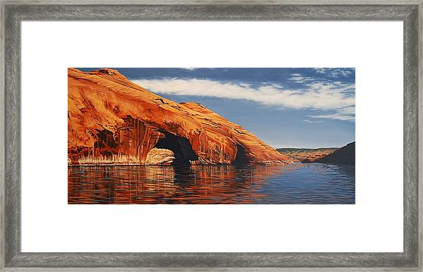 Osprey Hideaway Framed Print