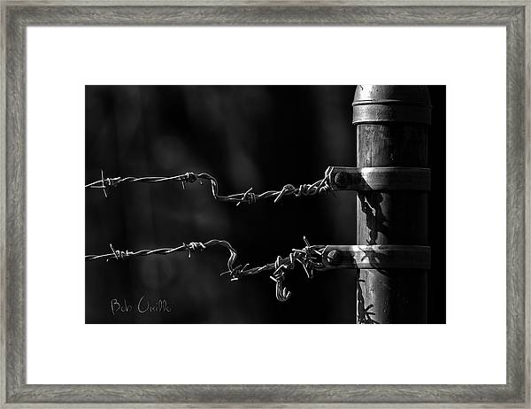 Other Side Of The Fence Framed Print