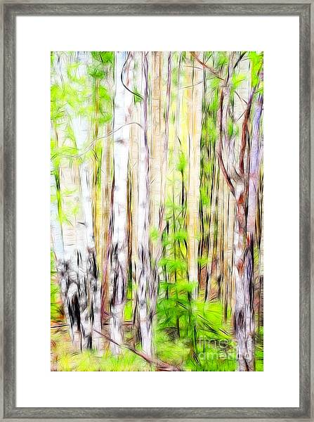 Out Of One Many Fractal Framed Print