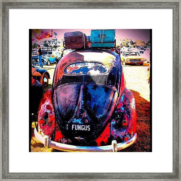 Packed & Ready To Go Framed Print