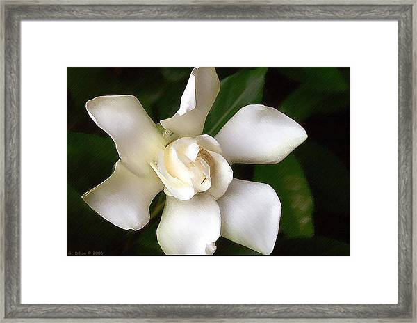 Painted Purity Framed Print