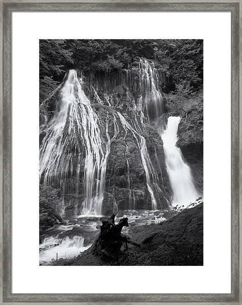 Panther Creek Falls 2 Framed Print