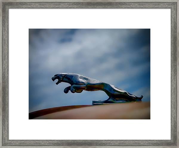 Panther Hoodie Framed Print