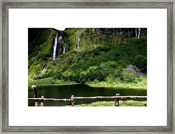 Paradise II Framed Print