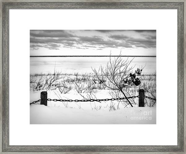 Park In Winter Framed Print