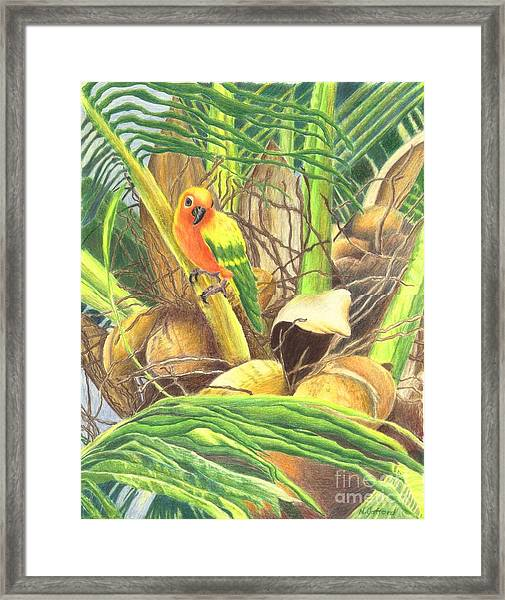 Parrot In Palm Framed Print