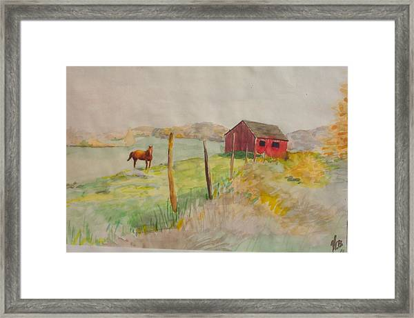Pasture In Lagrangeville Framed Print