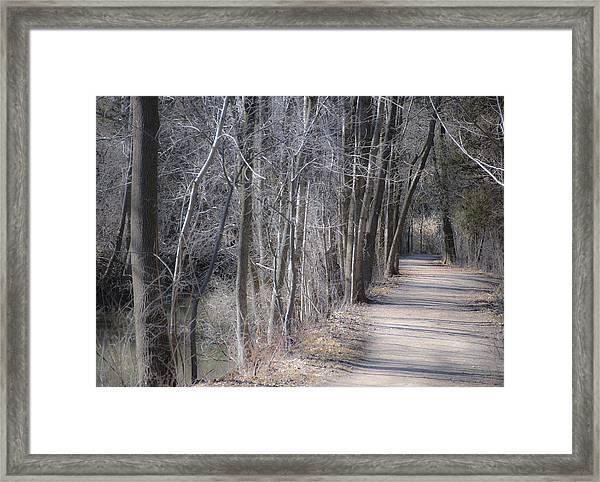 Path-ology Framed Print