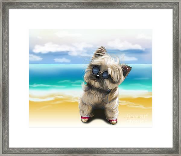 Petey In Coney Island Framed Print