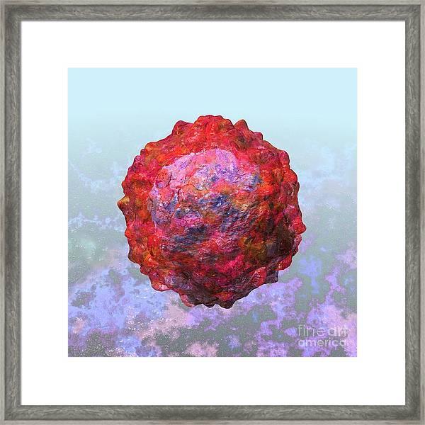 Polio Virus Particle Or Virion Poliovirus 2 Framed Print