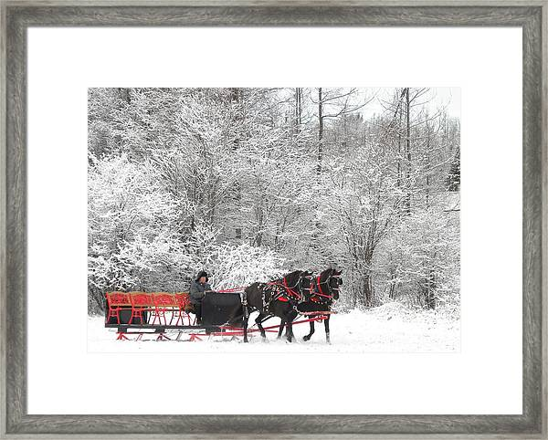 Polly And Pearl Framed Print