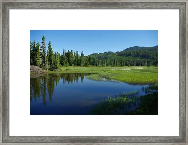 Pond Reflection Framed Print
