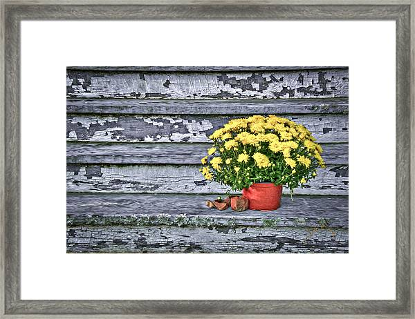 Pot Of Gold Framed Print by Williams-Cairns Photography LLC
