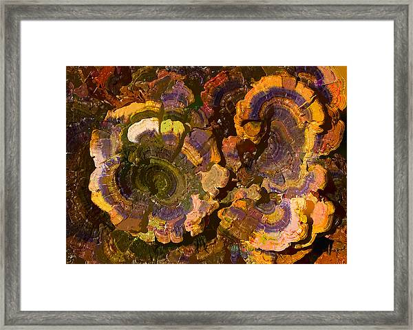 Psychedelic Fungi Framed Print
