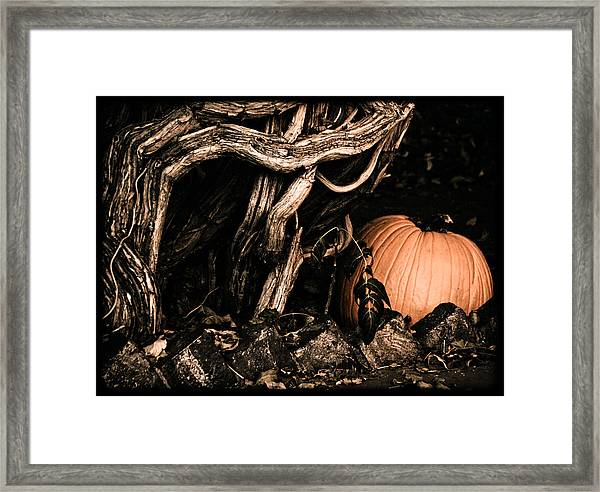 Albuquerque, New Mexico - Pumpkin Framed Print