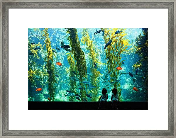 Pure Childhood Fun  Framed Print by Donna Pagakis