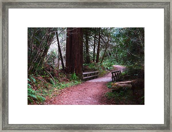 Purisima Creek Bridge Framed Print