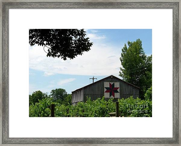 Quilted Barn And Vineyard Framed Print