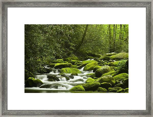 Rapids At Springtime Framed Print