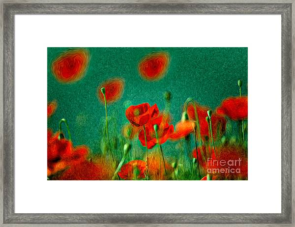 Red Poppy Flowers 07 Framed Print